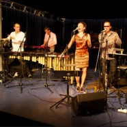 Marimba Plus_03